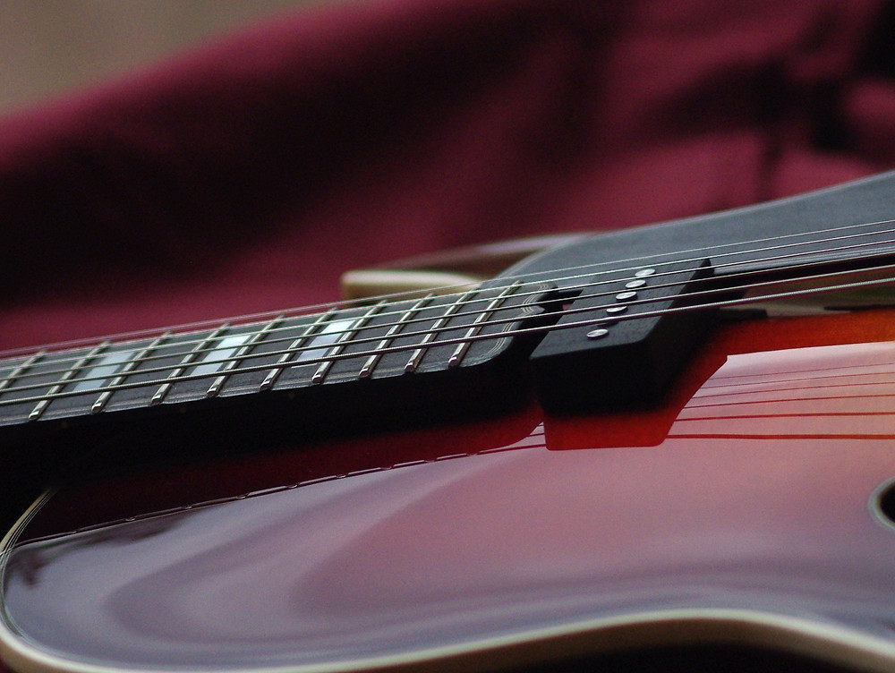 Detail about fretboard and pickup