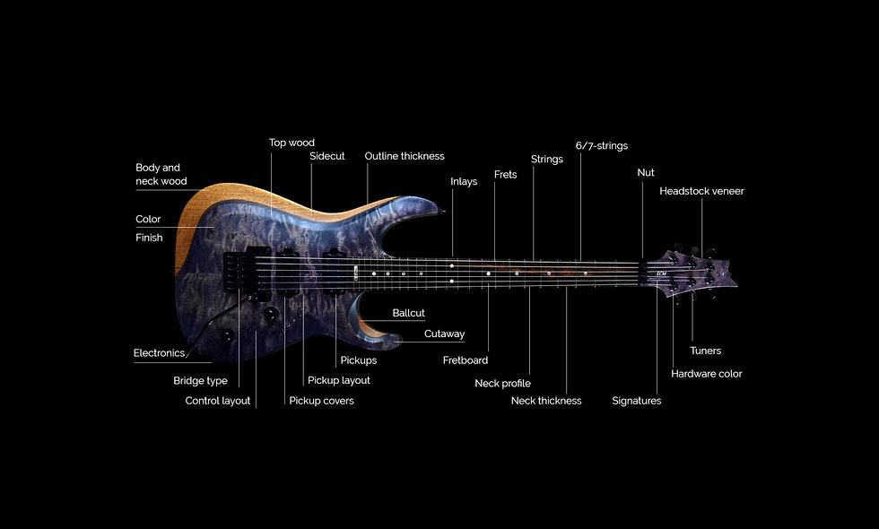 Guitar customization topics shown with Taisto Guitars V25-FR Berry custom guitar