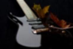Taisto Guitars V25-VT guitar customized with DiMarzio pickup set