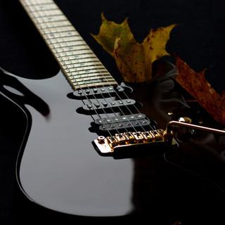 Taisto Guitars V25-VT