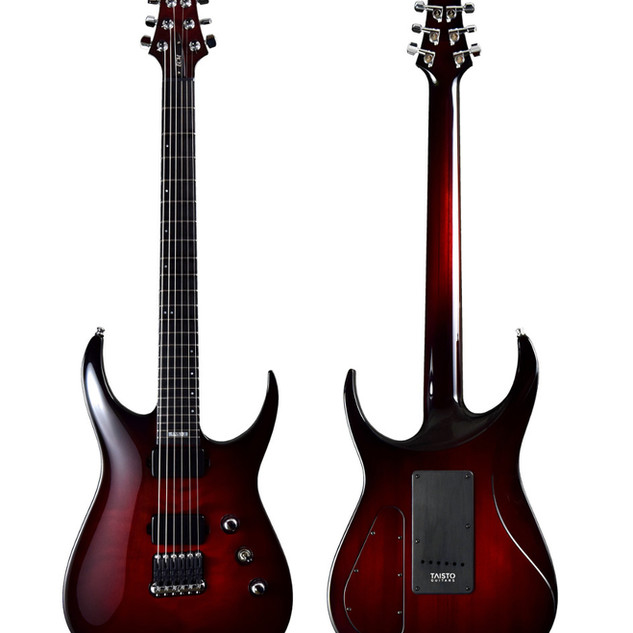 Taisto Guitars V25-FX/H ECM