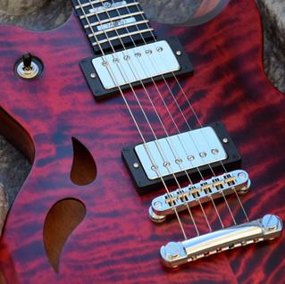 Taisto Guitars AROK-TM in case