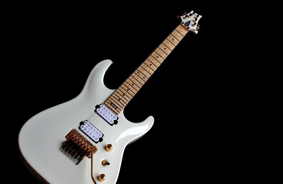 Taisto Guitars V25-FR custom guitar