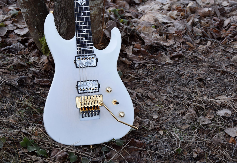 Taisto Guitars V25-FR plus2 27 inch baritone guitar with Floyd Rose bridge