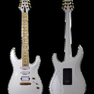 V25-FX/S ECM white