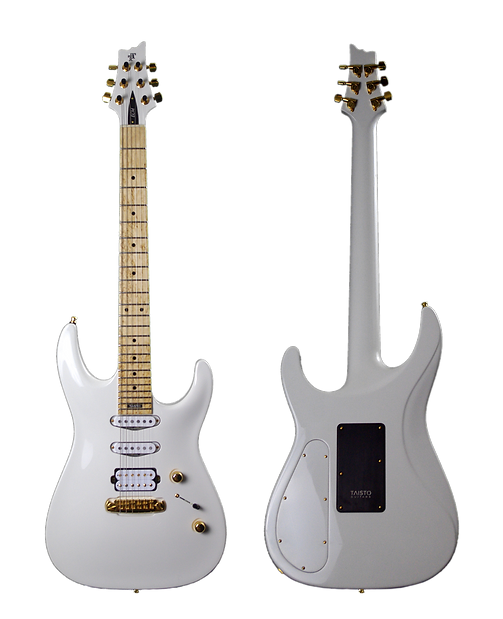 V25-FX_S Front and Back