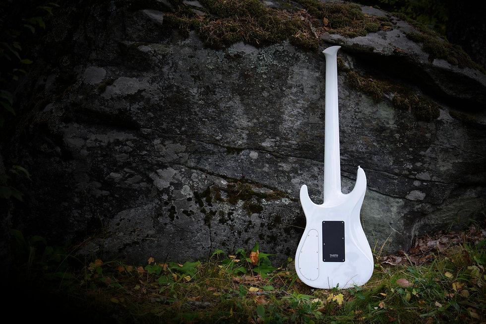 Web - Taisto Guitars - iZEN-5MS Bass Bac