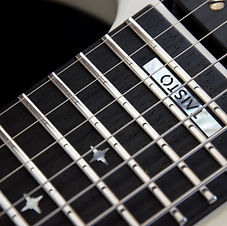 Fretboard customization include choices for fretboard wood, fret type, fret width, inlays and side dots