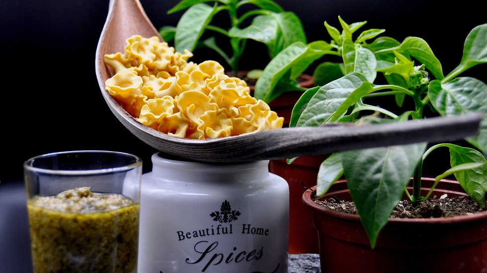 Tulpen - Curry