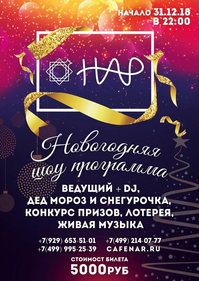 Новогодняя шоу программа!