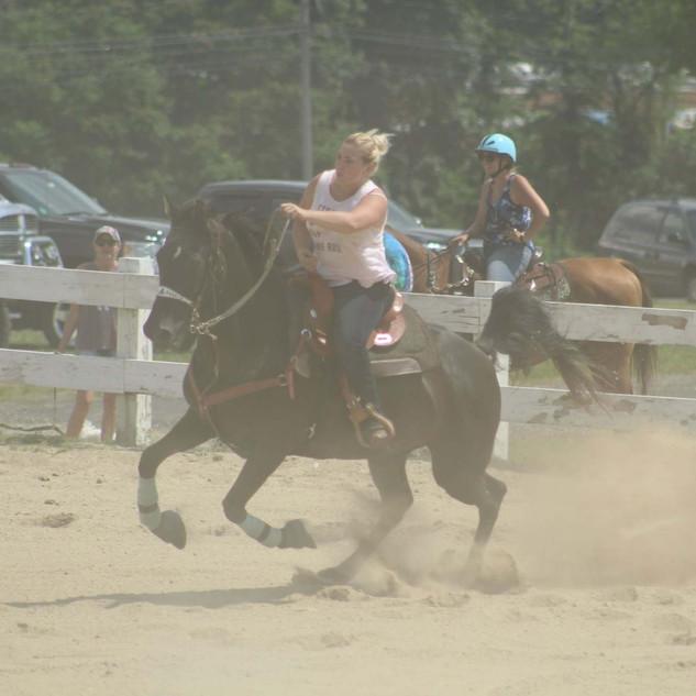 Sammy- Saddle View