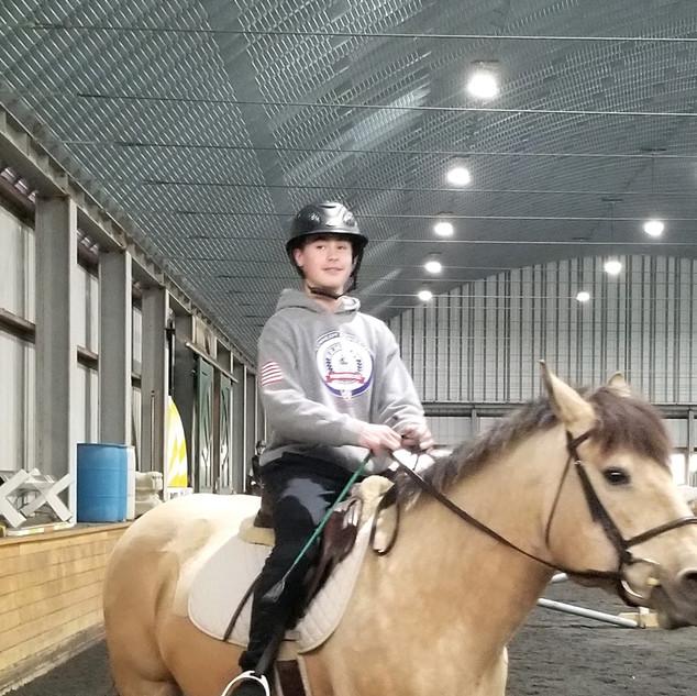 Milla- Revolution Equestrian