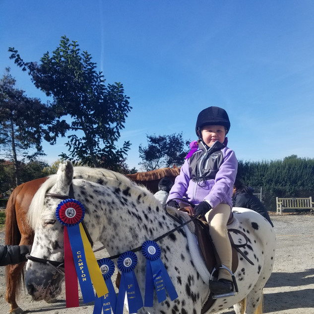 Dots- CSJ Eventing