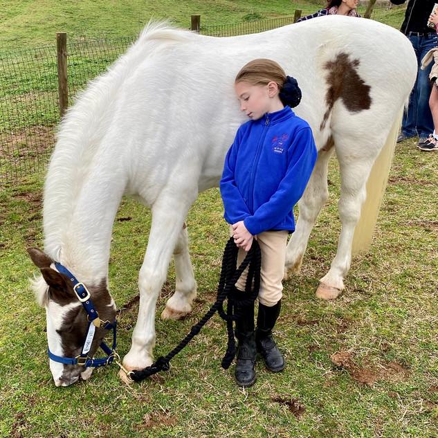 My Little Buddy- The Riding School