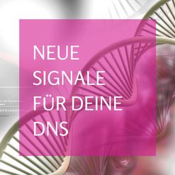 Zugang zur holographischen DNS