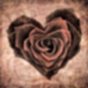 heart-1205291_bearbeitet.jpg