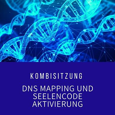 DNS Aktivierung