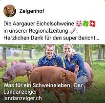 Bild Bericht Landanzeiger.jpg