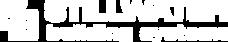 SBS Logo Large-WHITE.png