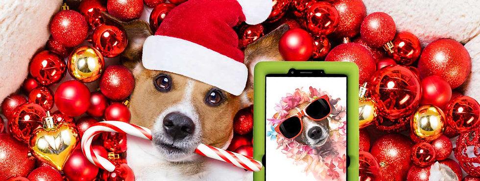 Happy-Holidays-Image-4.jpg