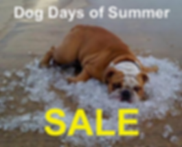 Dog Days of Summer Graphic.png