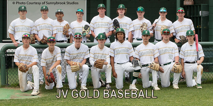 JV Gold Team.jpg