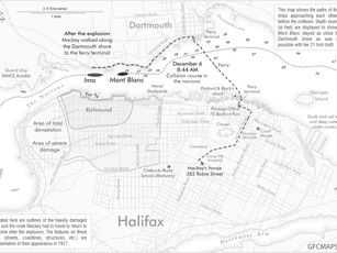 Custom Mapping for Book Publication - Plate 2