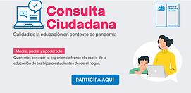 consulta ciudadana .png