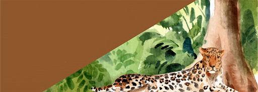 Copia de diseno-banner-zoologico-leopard