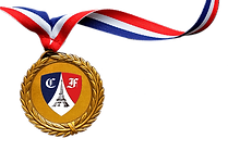 gold_medal_PNG57.png