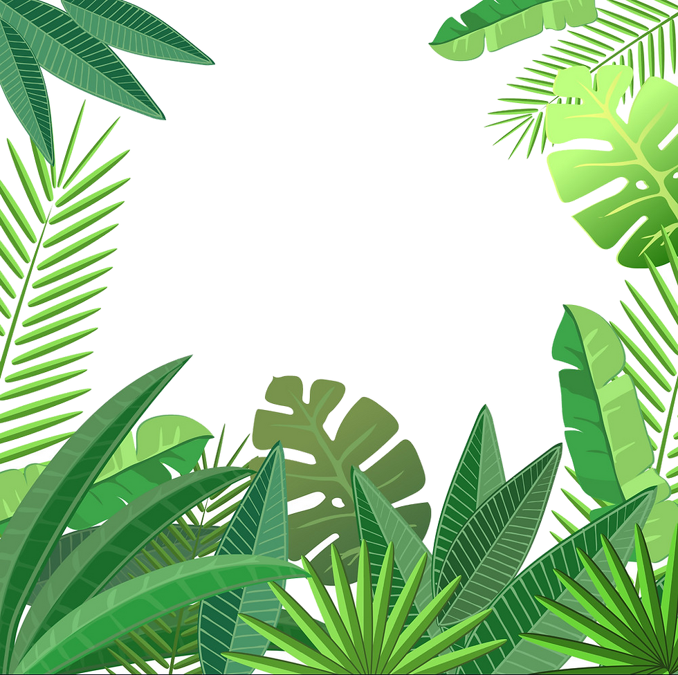TROPICAL LEAVES.png