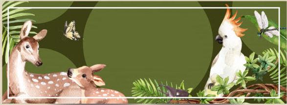 diseno-banner-zoologico-ilustracion-acua