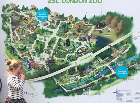 George Kids Easter event @ London Zoo