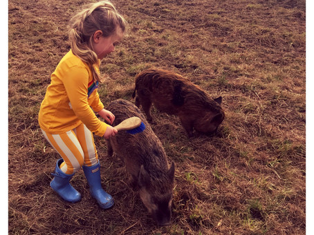 Lindex-Press trip-Kew little pigs farm