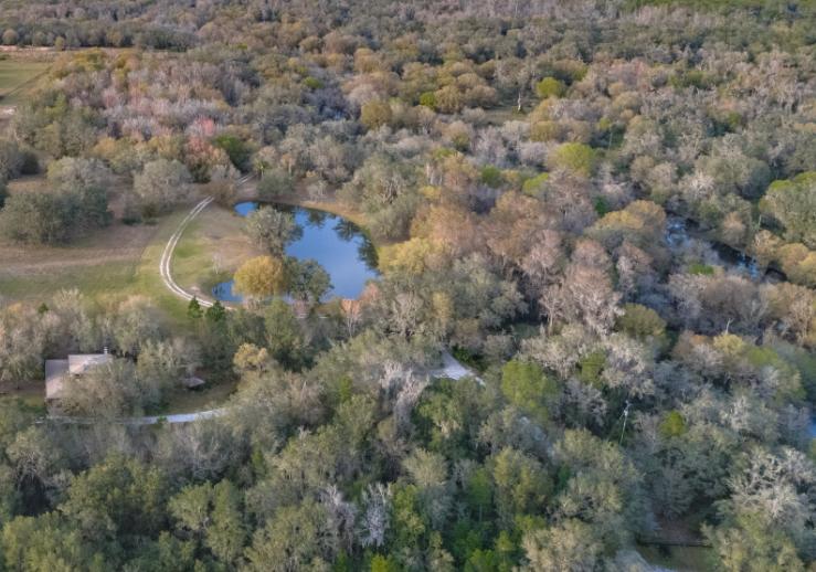 Pond Aerial.PNG