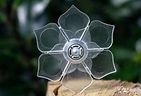 flotteur lotus
