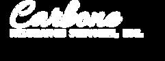 Carbone Logo - WHITE (2).png