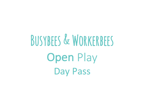 Open Play Day Pass (18m-3yrs)