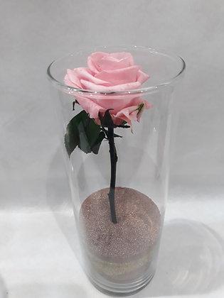 Rose éternelle en vase n°6