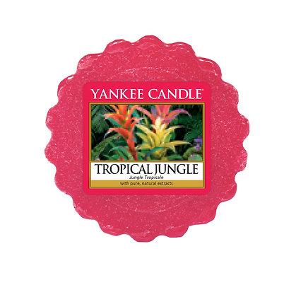 "Tartelette ""Jungle tropicale"" Yankee Candle"