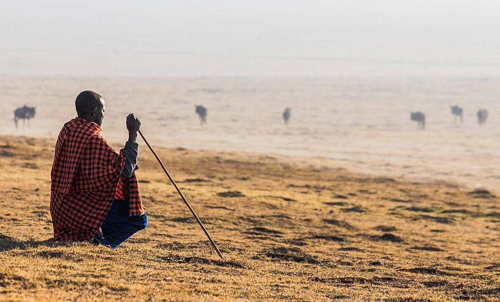 Real Maasai village experience in Tanzania