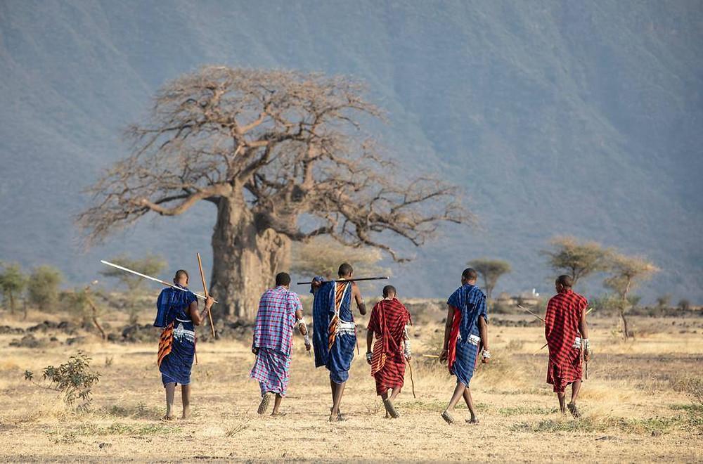 Maasai, Maasai warriors, warrior, Tanzania, Maasai village, Maasai stay
