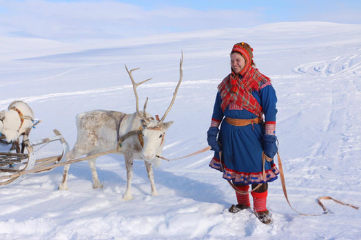 A Sami woman and a reindeer