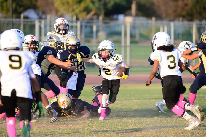 LA Valley Ducks GCYFL