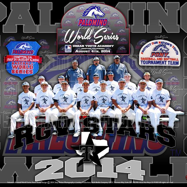 Texas Stars Team Poster