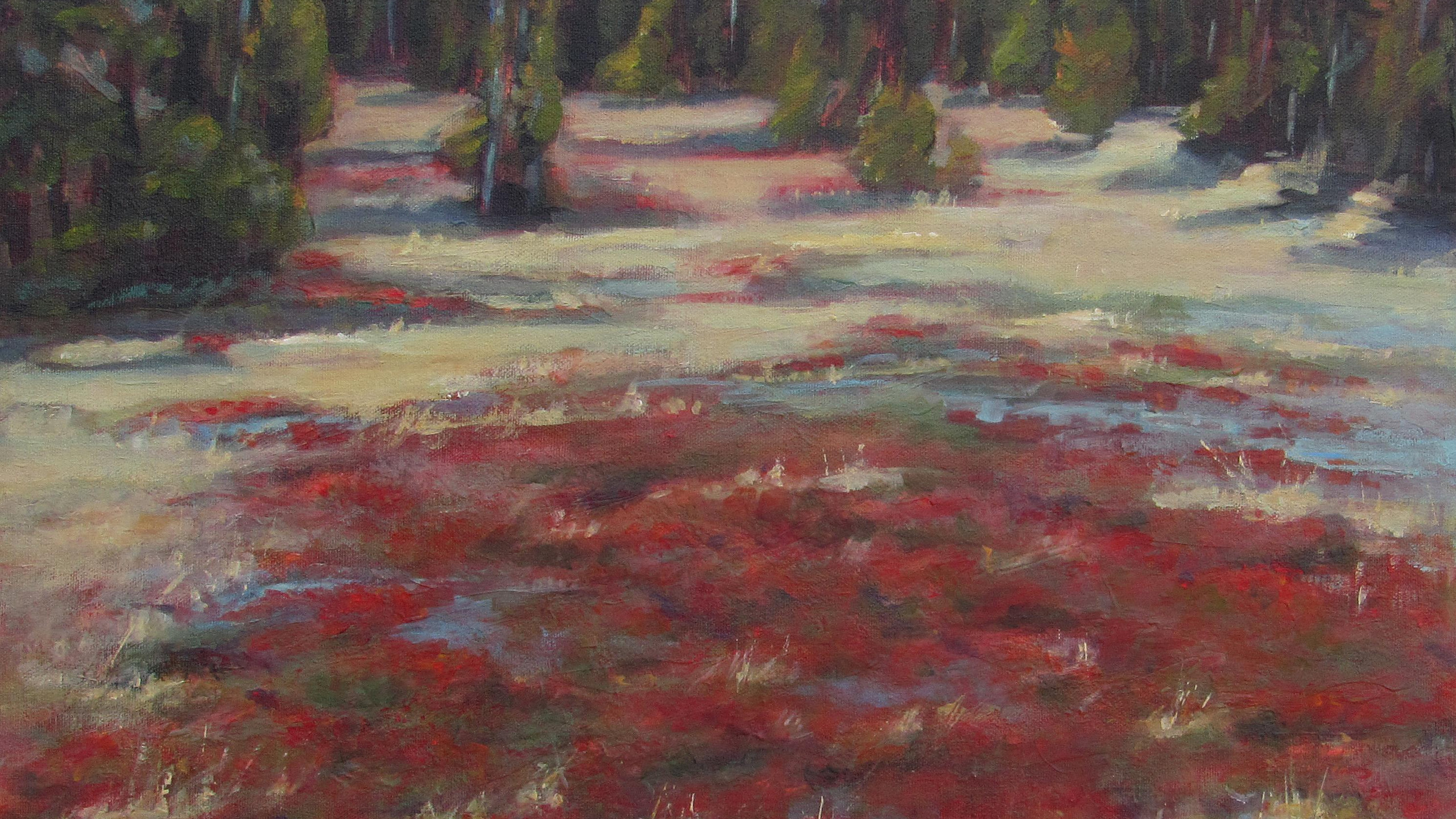 St Marie, Fay - Strathcona Park Meadow