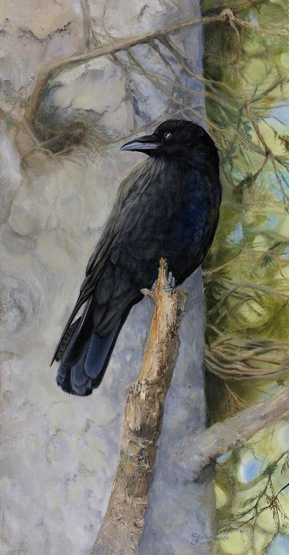 Johnman, Sandra - The Raven