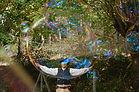 compagnie NaKOH, zlm productions, bulles géantes, spectacle de bulles géantes, spectacle enfants, spectacle tout public, lot et garonne