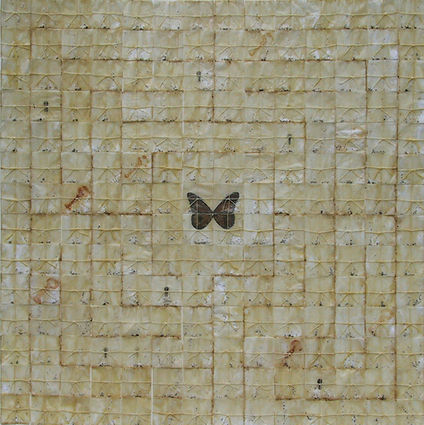 Paul Roorda Labyrinth -butterfly wings e