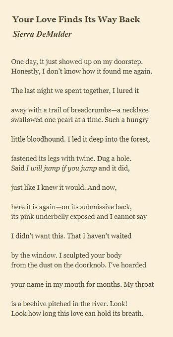 Sierra DeMulder -Your Love FInds its Way